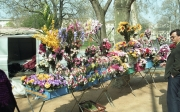 Flower stall in Place Carnot