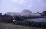 THE PALM HOUSE & URN