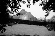 Kew Gardens