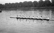 Sabin A paddling