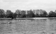 2nd VIII, putney race