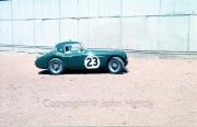 Scrutineering - #23 Austin Healey 3000 (Jack Sears and Peter Riley)