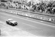 #21 Austin-Healey 3000 (John Bekaert and Richard Stoop)