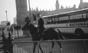 Mounted Police in Parliament Square