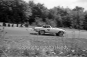 Sportscars - #91 E-Type Jaguar (Roy Salvadori)
