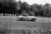 Sportscars - #95 E-Type Jaguar (George Wicken)