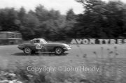 Sportscars - #93 E-Type Jaguar (Bruce McLaren)