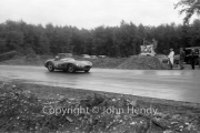 Sportscars - #82 Aston Martin DBR2, Bruce Halford