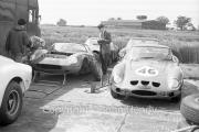 GT and Sports Cars - #46 Ferrari 250 GTO (Jack Sears) and #52 Ferrari (Mike Parkes)