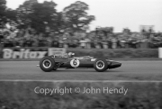 Formula 1 - #6 Lotus-Climax 33 (Mike Spence)