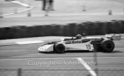 F1 - #19 Surtees-Cosworth (Vittorio Brambilla)
