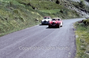 Alpine Rally - Austin-Healey 3000