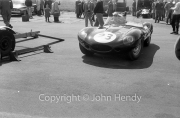 Sports cars - #23 D-Type Jaguar, Michael Salmon