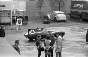 Sportscars - #34 Group + D-Type Jaguar (Roy Salvadori) in the paddock