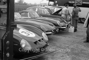 Sportscars - Equipe Endeavour - Ferrari GTO #31 and Jaguars in the paddock