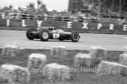 Formula 1 - #11 Lotus 24 - Climax V8 (Jim Clark)
