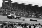 Sportscars - #31 Ferrari 250 GTO 3589GT MO75723 (Mike Parkes)