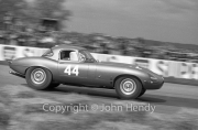 GT Cars - #44 Jaguar E-Type 3781cc (Roy Salvadori)