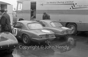 GT - #17 Lotus Elan (P.Arundell) and another Elan - probably #16 (Jim Clark) - both Ian Walker Racing