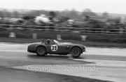 GT - #39 AC Cobra (J.Sears)