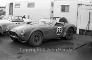 GT - #39 AC Cobra (J.Sears)