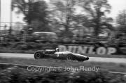 Formula 1 - #8 Cooper-Maserati T81 (Jo Bonnier)