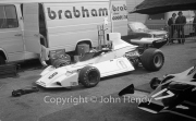 F1 - #8 BT42 Brabham-Cosworth (Richard Robarts)