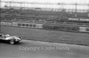 "#1 team - Jaguar Drivers Club - ""B"" car - D-Type, MV Mackie"