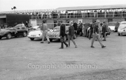 People in the paddock