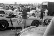 Team #16 Healeys - Car E Austin-Healey 3000 2912cc, Elizabeth Jones