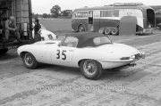 Touring cars - #35 Jaguar E-type Lightweight (Roy Salvadori) in the paddock