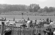 Formula 3 cars (500cc) on the grid (probably 1st heat). #22 Mackson JAP (MG Thomas), #40 Grenfell JAP (MR Lovell), #50 Staride Norton (Harold Phillipson), #53 Cooper JAP (Henry Taylor)