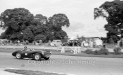 #46 Aston Martin DB3S, 2922cc (DR Barthel, Panda Racing Team)