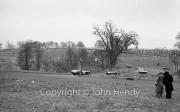 General view. #60 Aston Martin DB3S - AG (Graham) Whitehead abd #61 Alfa-Romeo 6C 3000 CM - Ken Wharton