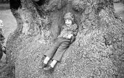 Simon in the Delapre tree