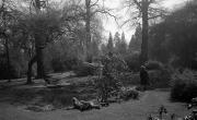 Delapre gardens