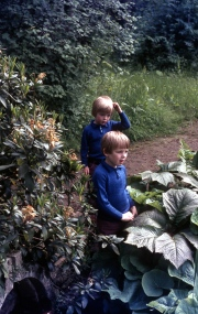 David and Simon