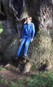 David in the Delapre tree