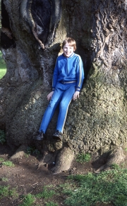 David in the Delapre tree