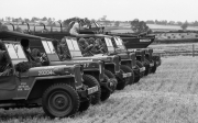 US Army Jeeps at Tractor Rally