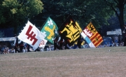 Belgian flag wavers