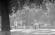 Across the park