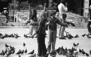 Feeding pigeons in Piazza San Marco