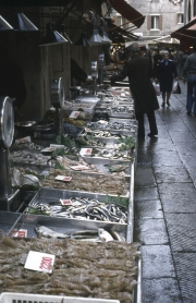 Rialto Markets - line of fish stalls
