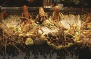 Seafood display in restaurant window