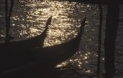 Silhouette of Gondola Bows