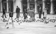 Photographers in Piazza San Marco