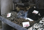 Rialto Markets - fish stall