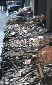 Rialto Markets - line of fish stalls