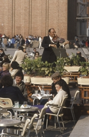 Piazza San Marco - Florian's fiddle player